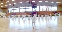 Shito-ryu Shukokai Karate Seminars in Berlin - Germany - Sensei Tsutomu KAMOHARA