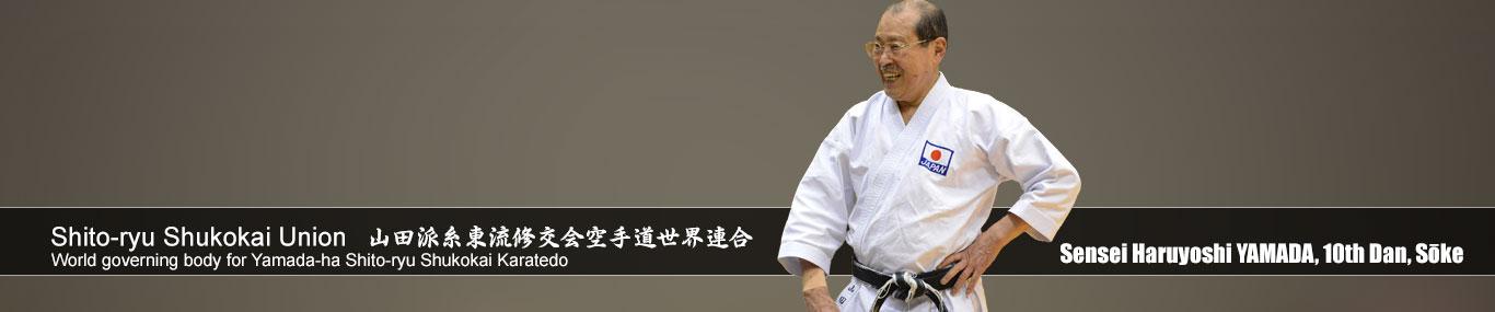 sensei Haruyoshi Yamada